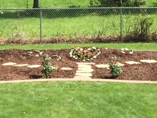 Walking path mostly in, as well as mulch, rose bushes, and a heart filled with flowers.